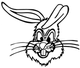 Cecil the Rabbit  Somerset High School Mascot